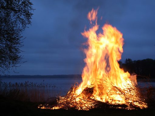 Mitévők legyünk januártól? Élet a kerti avar égetése után  (I. rész)